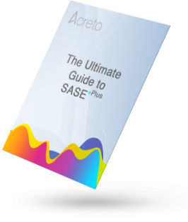 Ultimate Guide to SASE plus